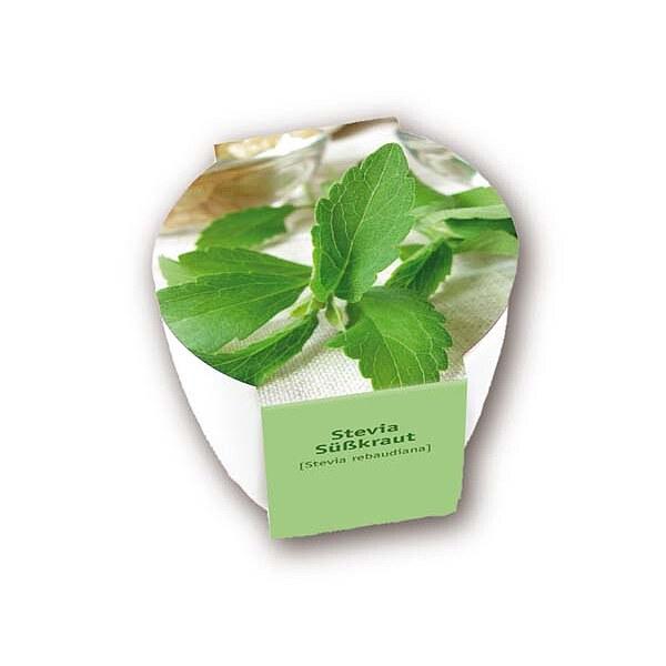 premium pflanzset 39 39 s kraut stevia 39 39 geschenkideen von. Black Bedroom Furniture Sets. Home Design Ideas