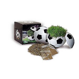Dose Ball Box Rasen