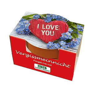 Mini-Pflanzset ''I love you''
